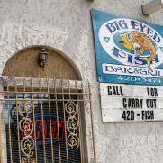 Big Eyed Fish Carryout
